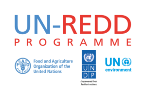 UN-REDD