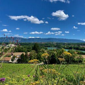 Geneva Country side