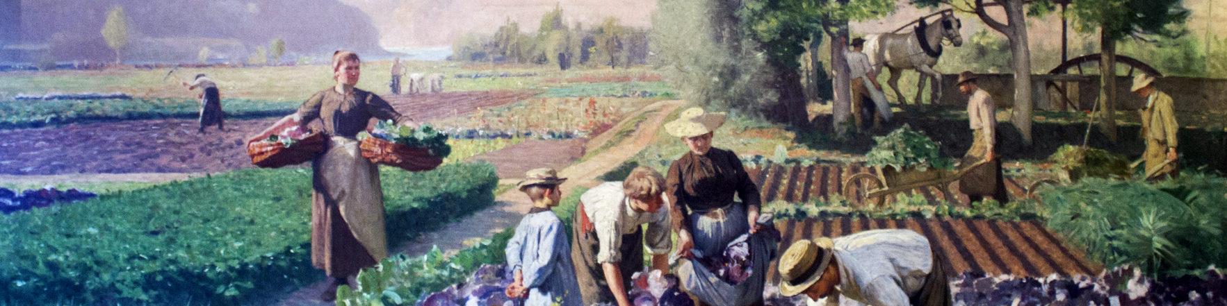 Jardins maraîchers de Plainpalais, Edouard Ravel, 1894.